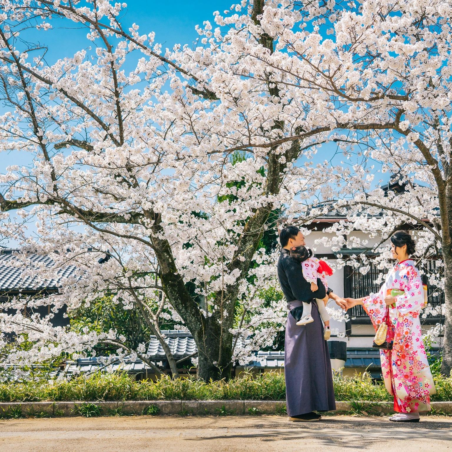 京都和服漫遊, 和服寫真拍攝