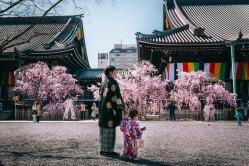 與小人賞櫻, 京都和服外拍